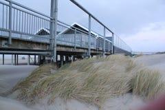 与草的沙丘在北海的海岸在西兰省在荷兰 免版税库存照片