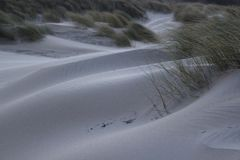 与草的沙丘在北海的海岸在西兰省在荷兰 库存图片