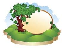 与草的结构树 免版税库存照片