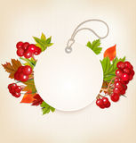 与荚莲属的植物和五颜六色的叶子的秋天标签 免版税库存图片