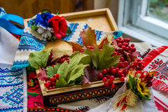 与荚莲属的植物的乌克兰静物画 免版税图库摄影