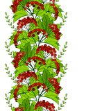 与荚莲属的植物的无缝的斯拉夫的装饰品 与束的样式红色莓果 库存图片