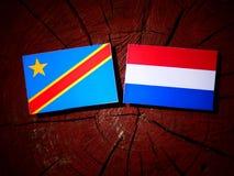与荷兰旗子的刚果民主共和国旗子在树 免版税库存图片