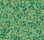 与荷兰芹叶子的无缝的纹理 库存照片