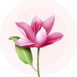 与荷花的典雅的花卉背景 库存图片