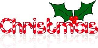 与莓果传染媒介的圣诞节标志 向量例证