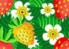 与莓果和花无缝的传染媒介样式的开花的草莓 免版税库存图片