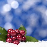 与莓果装饰正方形的圣诞节背景 免版税库存图片