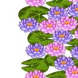 与莲花和叶子的自然无缝的边界 背景被做,不用截去的面具 易使用为背景 库存图片