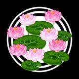与莲花和叶子的自然本底 设计的图象在T恤杉,印刷品,装饰小册子,网站 免版税库存照片