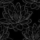 与莲花的黑白无缝的样式 库存图片
