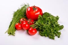 与莳萝和荷兰芹叶子的蕃茄菜 免版税库存图片