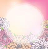 与菊花的亮光花卉背景 库存照片