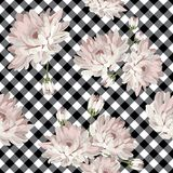 与菊花的花卉无缝的样式在方格花布,被检查的背景 库存图片