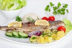 与菜、草本和柠檬的煮熟的鱼 免版税图库摄影