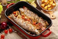 与菜和土豆的被烘烤的鳟鱼在平底锅 图库摄影
