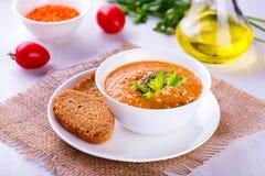 与菜和多士的可口扁豆奶油汤 免版税库存图片