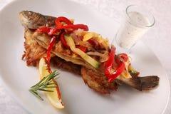 与菜和小汤的鱼 免版税库存图片