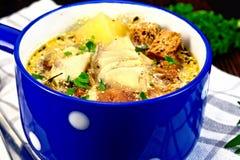 与菜和油煎方型小面包片的汤鱼在餐巾 免版税图库摄影
