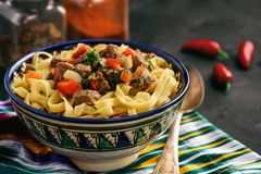 与菜和肉的传统亚洲汤面,叫作lagman 东方人,乌兹别克人样式烹调 免版税图库摄影