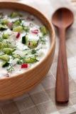 与菜和莳萝的冷的汤 库存图片