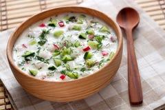与菜和莳萝的冷的汤 免版税库存照片