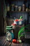 与菜和蜜饯的木地下室在瓶子 库存图片