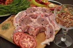 与菜和香料的新鲜的肉 库存照片