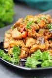 与菜和香料的肉炖煮的食物 免版税库存照片