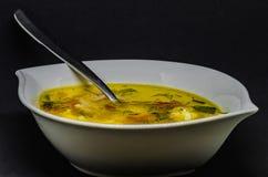 与菜和鱼的可口汤在黑背景 库存图片