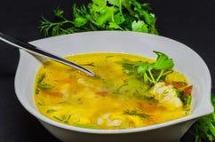 与菜和鱼的可口汤在黑背景 免版税图库摄影
