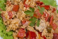 与菜和鸡的米在咖喱汁 库存图片
