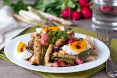 与菜和鸡蛋的新鲜的芦笋沙拉 库存图片