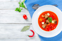 与菜或墩牛肉,传统匈牙利膳食的炖牛肉 图库摄影