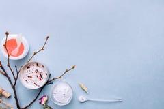 与菜手工制造成份的有机化妆用品 温泉,家庭护理:面具,削皮,洗刷 密集的营养 免版税库存图片