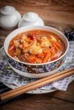 与菜的中国鸡 免版税库存照片