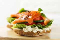 与菜的五颜六色的鲜美盐味的三文鱼在三明治 照亮 库存图片