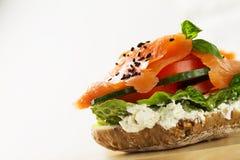 与菜的五颜六色的鲜美盐味的三文鱼在三明治 照亮 免版税库存图片