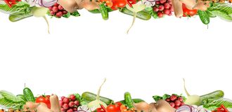 与菜的各种各样的类型的构成在框架的上部和低部的 : E 库存照片