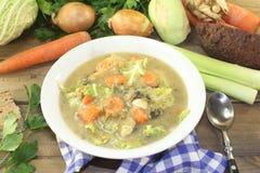 与菜的圆白菜炖煮的食物 免版税库存图片