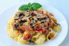 与菜的尼奥基和蘑菇炖煮的食物 免版税图库摄影