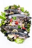 与菜的新鲜的海鲜 免版税图库摄影