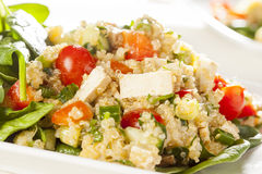 与菜的有机素食主义者奎奴亚藜 库存图片