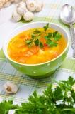 与菜的汤 免版税库存图片