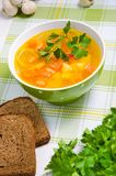 与菜的汤 免版税库存照片