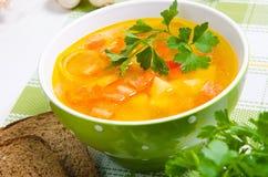 与菜的汤 免版税图库摄影