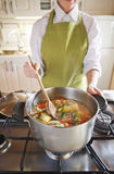 与菜的炖煮的食物 库存照片