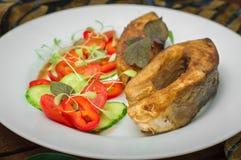 与菜的烤鱼排在板材:蕃茄、microgran,黄瓜,鲜美和健康晚餐 背景土气木  免版税库存图片