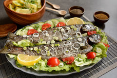 与菜的烤鳟鱼 库存照片