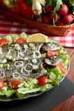 与菜的烤鳟鱼 免版税图库摄影